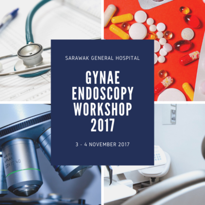 Gynae Endoscopy Workshop 2017